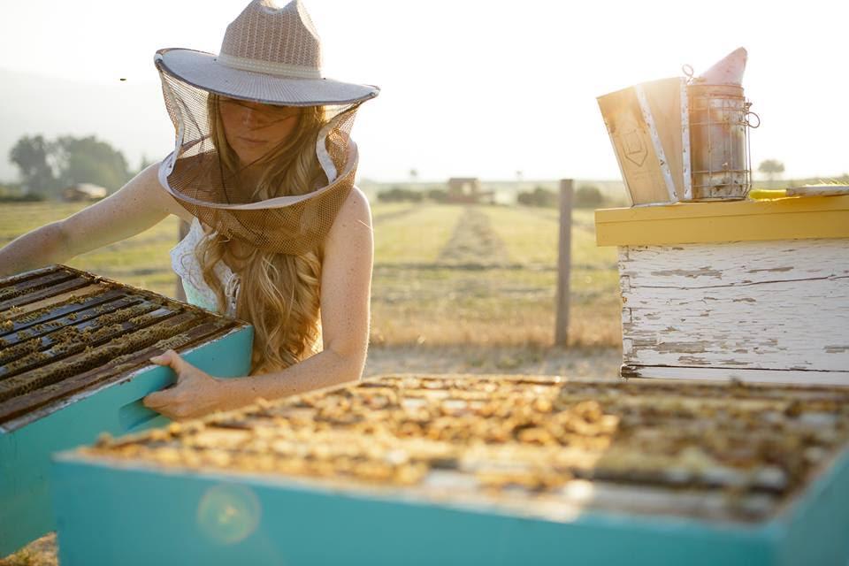The Bee Girl